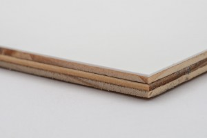 Agro-Plast laminated plywood