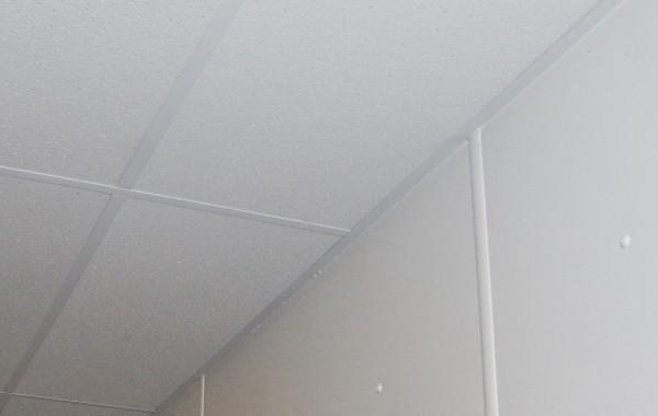 Agro-Esk tuile plafond
