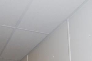 Agro-Esk fiberglass ceiling tiles