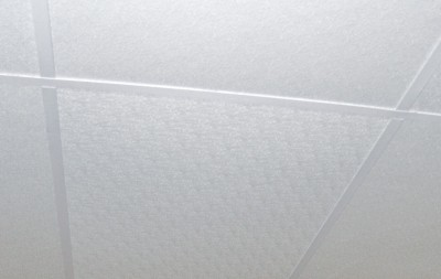 Agro-Esk fiberglass ceiling panels