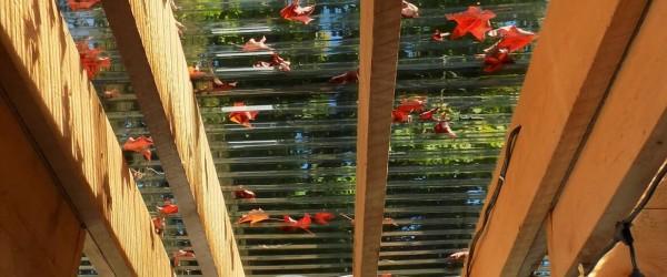 Gazebo, solarium, greenhouse. One product, three applications. post thumb